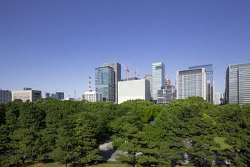 皇居東御苑からの大手町ビル群の眺め