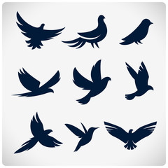 Set of flying birds sign. Dark silhouettes isolated on white.
