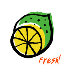 Sketch of fresh lime. Drawn isolated fruit in grunge style