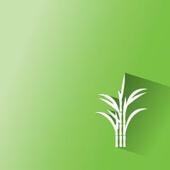 sugar cane on green background