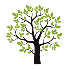Black Treeand Green Leafs. Vector Illustration.
