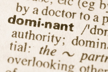 Dictionary definition of word dominant