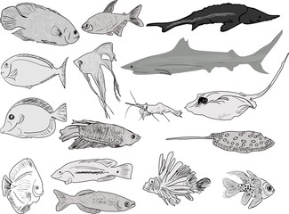 fifteen grey silhouette of sea fishes