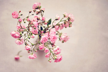 Small pink roses in a vase, texture background