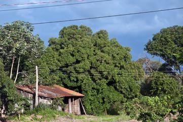 Feliz Natal, Mato Grosso
