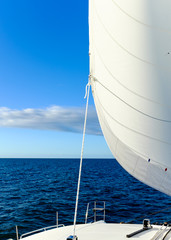 Sail Full of Wind under a blue sky on the ocean