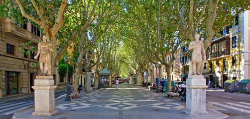 Passeig Borne - Palma de Mallorca