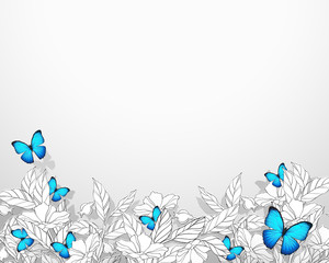 Nature / Floral background with butterfly
