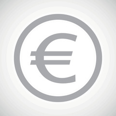 Grey euro sign icon