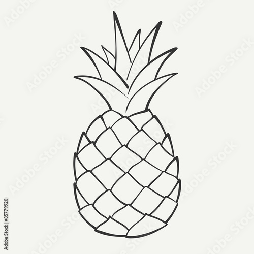 """""""Outline black and white image of a pineapple. Vector"""