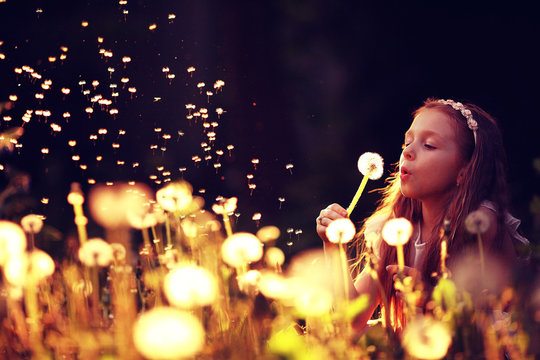 girl blowing a dandelion seeds flying