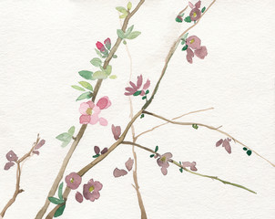 watercolor illustration of dry leaves and flowers on white paper background