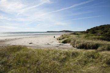 grassy sand dunes in nova scotia