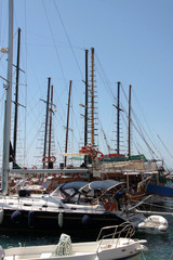 Seegelboote
