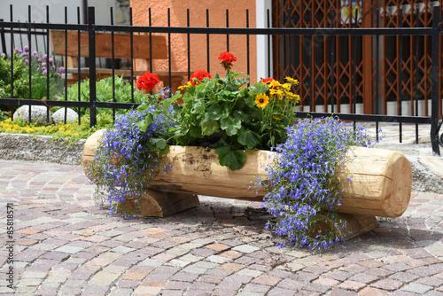 Anfore Con Fiori.Vasi Di Fiori Anfora Piante Fiore Giardino Immagini E