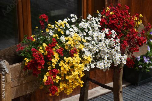 Anfore Con Fiori.Vasi Di Fiori Anfora Piante Fiore Giardino Stock Photo And
