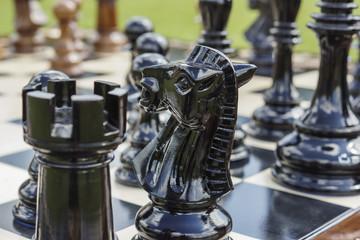 Das königliche Spiel