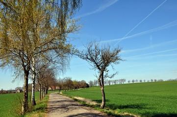 Auf dem Jakobsweg zwischen Dahlen und Lampertswalde