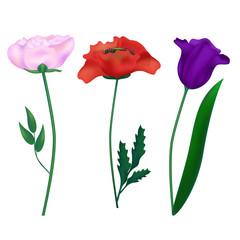 Set realistic flowers