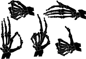 five human hand skeletons isolated on white