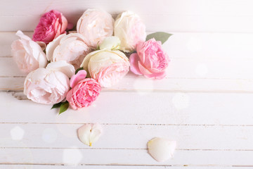Sweet pastel roses on white  wooden background.