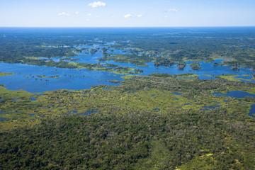 Wall Mural - アマゾン河岸の湖