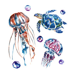 Isolated set with jellyfish and turtles. Watercolor illustration.