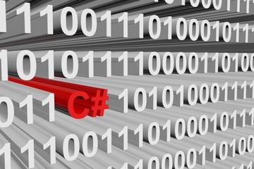 binary code C#