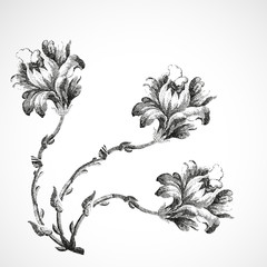 Hand-drawn bouquet of three flowers of corner lily, vintage isolated background vector illustration realistic sketch