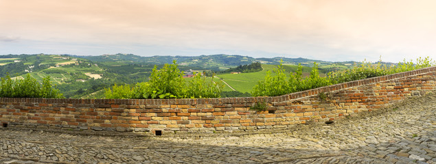 Langhe springtime panorama. Color image