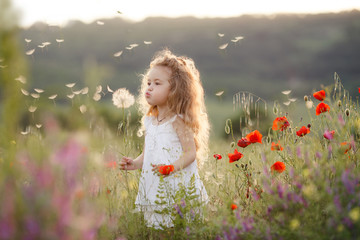 A little girl with a dandelion on a summer meadow