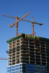 Industrial construction cranes and building work site