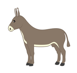 Cartoon Wild Donkey