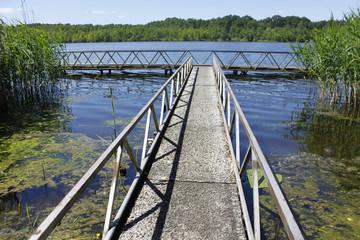See Teich Natur Landschaft