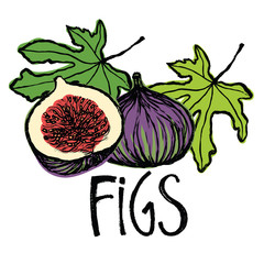 Fruits and leaves figs Design card