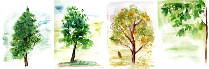 A set of various watercolour trees backgrounds