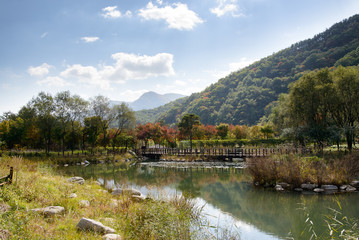 lake with wooden bridge in sunny day