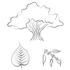 Bodhi tree with Buddha figure, vector illustration