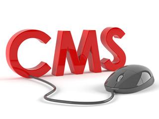 Cms Concepts