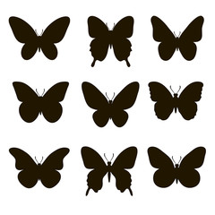 Set of silhouettes of butterflies on a white background.