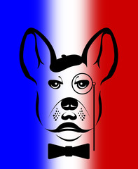 French bulldog illustration over a French flag background.