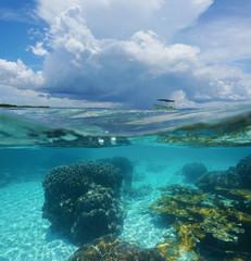 Split image coral underwater and threatening cloud