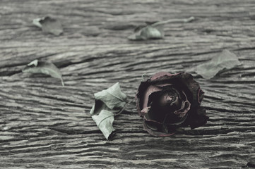 Dried Rose on old wooden background, broken heart concept