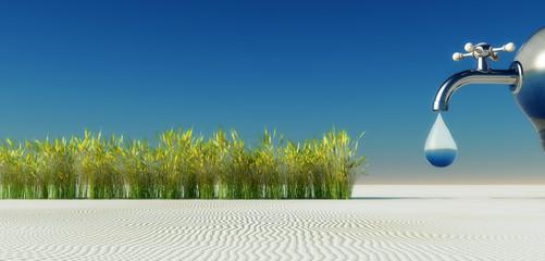 water and desert