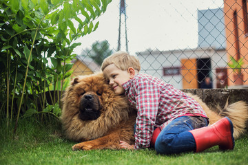 Child lovingly embraces his pet dog. Chow Chow. Outdoor portrait