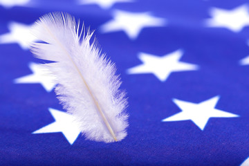 Closeup USA Flag and White Feather in Vertical for Background Uses.