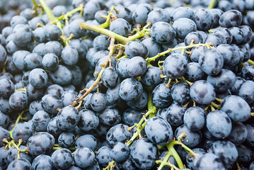 image of Grape, background for used