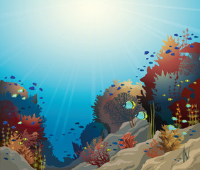 Underwater seascape and coral reef.