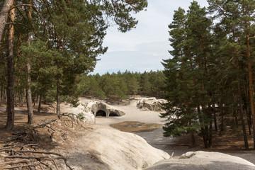 Sandsteinhöhlen bei Blankenburg / Regenstein