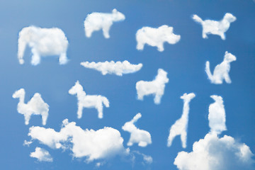 Animal clouds shape